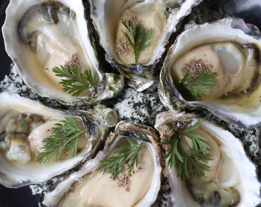 comment cultive-t-on exactement une récolte d'huîtres?